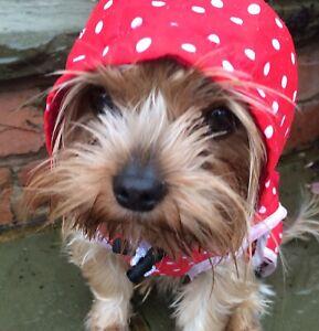 Pet Red Spotty Rain Coat Size XSmall