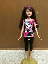 Barbie Sister Teen Skipper Brunette Hot Pink Hair Streak Doll Love Disney Outfit