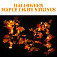 Halloween 1.5M LED Lighted Fall Autumn Pumpkin Maple Leaves Home Room Decor US
