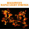 Halloween 1.5M LED Lighted Fall Autumn Pumpkin Maple Leaves Home Room Decor US