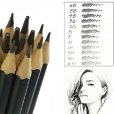 Set Of 12 GRADED ART SKETCHING PENCILS IN CASE H,B Drawing/Shades/Light/Dark UK