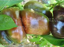 SWEET Chocolate Pepper * Paprika NERO * RAR
