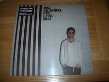 Noel Gallagher's High Flying Birds - Chasing Yesterday - New 180g LP + CD