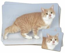 Ginger+White Manx Cat Twin 2x Placemats+2x Coasters Set in Gift Box, AC-102PC