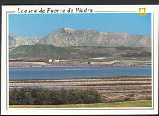Spain Postcard - Laguna De Fuente De Piedra - Reserva Natural Laguna  LC5511