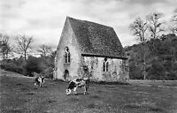 BR12019 Saint Ceneri le Gerei la Chapelle  france  real photo