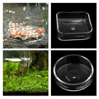 Aquarium Aquarium Shrimp Fütterung Lebensmittel Dish Tray Worms Feeder