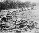 British infantry soldiers preparing to fire rifles 1914 World War I 8x10 Photo