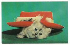 CAT IN THE HAT Try This One For Size! White Gray Kitten Red Vintage Postcard