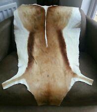 Springbok hide SUPER SOFT pelt taxidermy animal deer skin