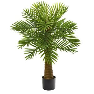 3' Robellini Palm Artificial Tree (Indoors) | Natural décor for home/office!