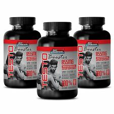 Testosterone Booster For Muscle Growth - TestoBooster T-855 - Nettle Extract 3B