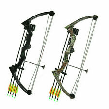 """20 """"strength 20Lbs aluminum compound bow right-handed for archery hunting"""