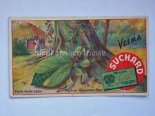 SUCHARD CACAO chocolate antica figurina lito Velma Milka 3