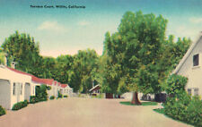 Willits,California,Terrace Court,Mendocino County,Linen Roadside,c.1940s