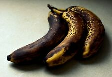 DO NOT BID OR BUY TEST TEST old banana