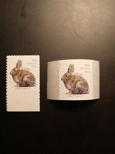 US 2021 Scott # 5544-5545 20c Brush Rabbit extra oz sheet & coil singles(2) MNH