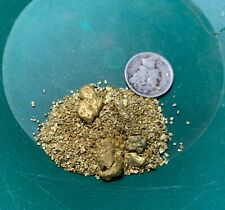 Gold Paydirt 8 lbs Unsearched Guaranteed Gold Panning Pay Dirt Gold Nuggets Bag