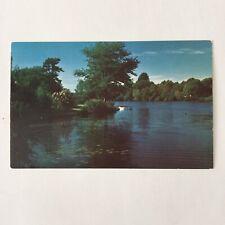 Landscape Mountain Scene Unposted Vintage Postcard