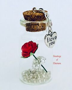 I Love You Miniature Gift Keepsake Girlfriend Wife Gift Present Any Occasion