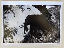 Photo François Dupuy - Inde 1990 - Tirage argentique 30x40 baryté -