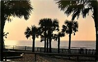 Greetings from Myrtle Beach SC South Carolina Postcard