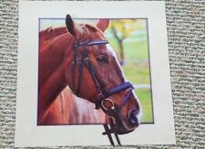 Horse Head Interactive 3D Picture Lenticular Print  Wall Art Decor
