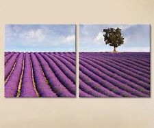 LAVANDA,pared,Cuadro Lienzo Pared Lavanda Imágenes ITALIA Decoración Púrpura