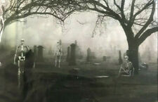 CEMETERY SKELETONS Scene Setter Halloween party scary wall decoration backdrop