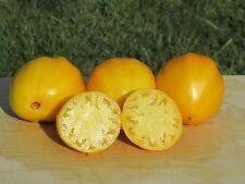 Korol Sibiri Tomato Seeds- Organic- Rare Yellow Russian Variety- 25+ 2017 Seeds