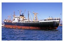 mc4236 - Bank Line Cargo Ship - Marabank , built 1963 - photo 6x4
