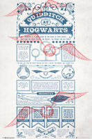 Harry Potter - Quidditch Rules POSTER 61x91cm NEW * Hogwarts