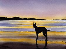 Great Dane Sunset Painting Dog 8 x 10 Art Print Signed by Artist Djr