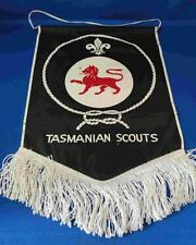 Old Tasmanian Scouts Banner