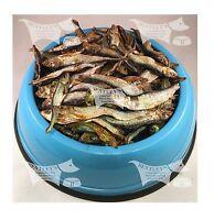Dried Sprats, Bulk Buy Dried Fish - 100 gm sample, 1, 3 and 5 Kilos.