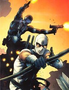 IDW Comics Gi Joe Snake Eyes Storm Shadow Issue No 14 Serpents Shadow Cvr B 2012