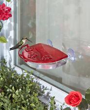 Sipper Window Hummingbird Feeder Perch Nectar Bird Wildlife Food outdoor Feeders