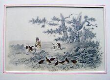 I disegni di caccia di Pernici, in un paesaggio collinare a matita scuola inglese c1840