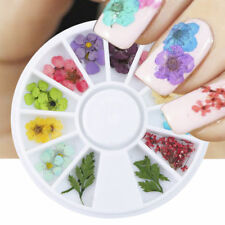 12 Colors Nail Art Dried Flowers 3D Flower Leaves Decoration Nails Stickers Tips