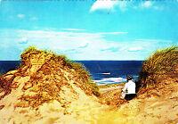 Insel Sylt , Dünendurchblick ,AK 1981 gel.