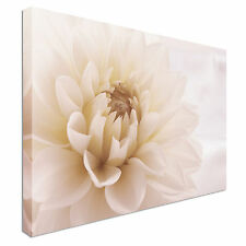 Dahlia Flower Canvas Wall Art Picture Print