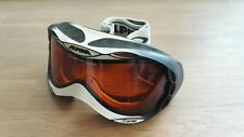 Alpina Ski-und Snowboardbrille