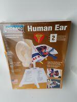Lindberg Science Kits Human Ear 71308 New Sealed NICE model kit anatomy medical