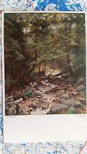 Waldbach Bach Wald Steine Landschaft Gemälde Kunst Postkarte Ansichtskarte 3192