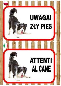 Border Collie Beware Of The Dog sign UWAGA ZŁY PIES ATTENTI AL CANE Plaque