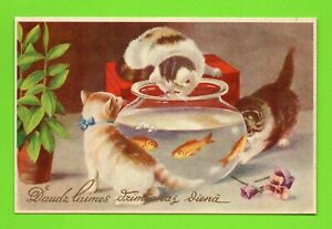 LATVIA LETTLAND CATS AND AQUARIUM WITH FISH happy Birthday VINTAGE POSTCARD 264