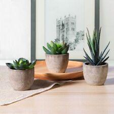 OUNONA Faux Succulents Artificial Cactus Simulation Cacti Potted Plants - 3 Piece