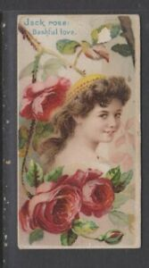 CIGARETTE CARDS Duke 1892 Floral Beauties & Language of Flowers - #27 Jack Rose