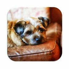 Border Terrier Flirty Gerty Coaster, Dogs, Pets, Tea, Coffee, Home CMSCOT0148