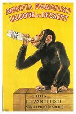 Liquore Da Dessert Poster! Funny Monkey Drinking Sweet Italy Promotional New!